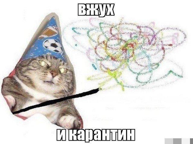 Карантин, удаленка и майские праздники мемы из Сети