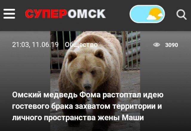 Комичные и странные новости в российских СМИ