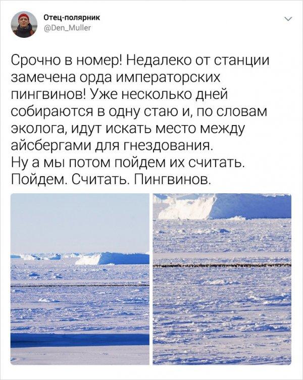 Подборка интересных твитов от полярника, который рассказал о жизни в Антарктиде