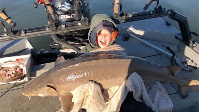 9-летний мальчик вытащил из озера гигантского 36-килограммового осетра