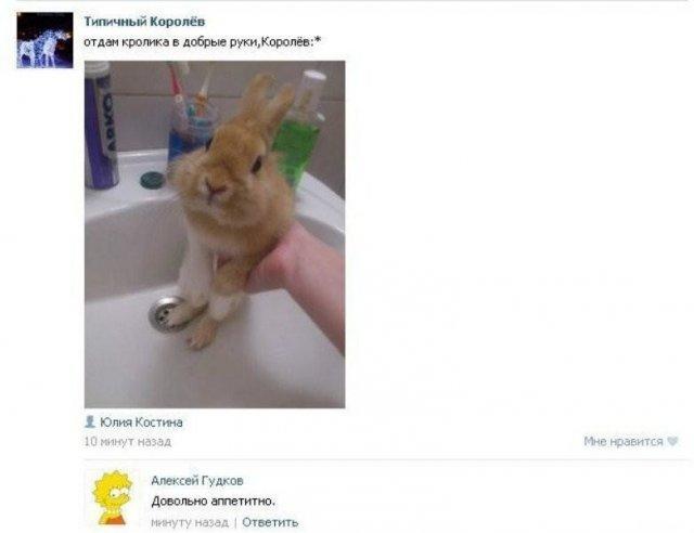 Смешные любители халявы в Интернете