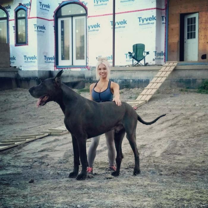 Девушка ростом 150 см вырастила дога размером с лошадь