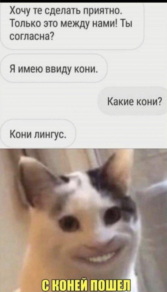 Забавные шутки и мемы из интернета
