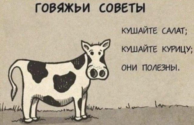Забавные мемы и шутки из Сети