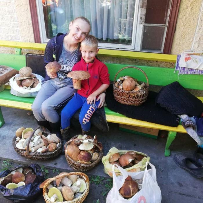 Грибная лихорадка в Беларуси
