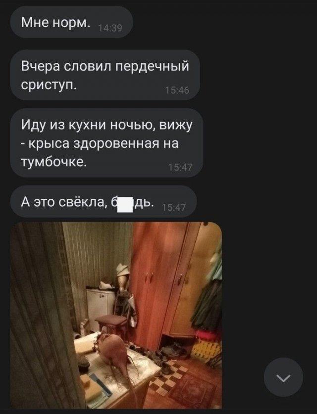 """Фотографии из серии """"показалось"""""""