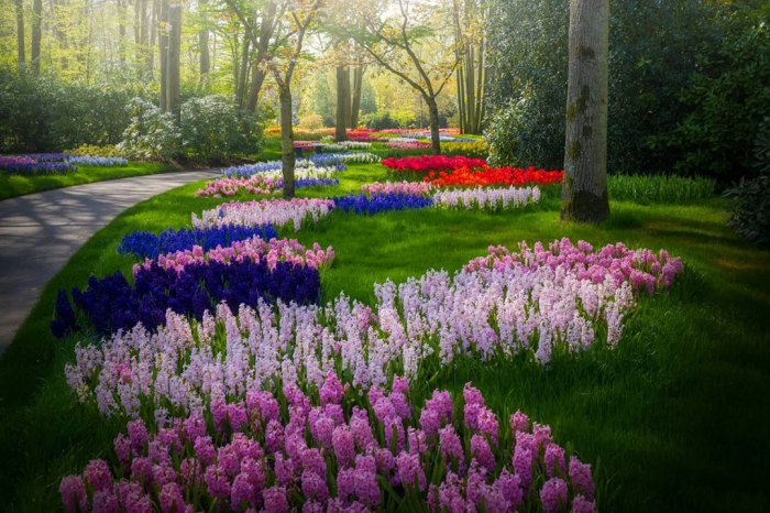Виртуальное путешествие в нидерландский парк цветов Кёкенхоф