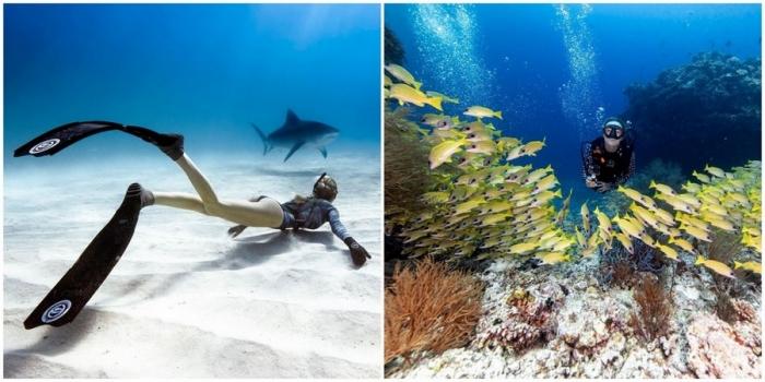 Впечатляющие подводные фотографии Хуана Олифанта