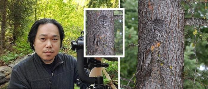 Канадский фотограф-любитель снял «невидимую» сову