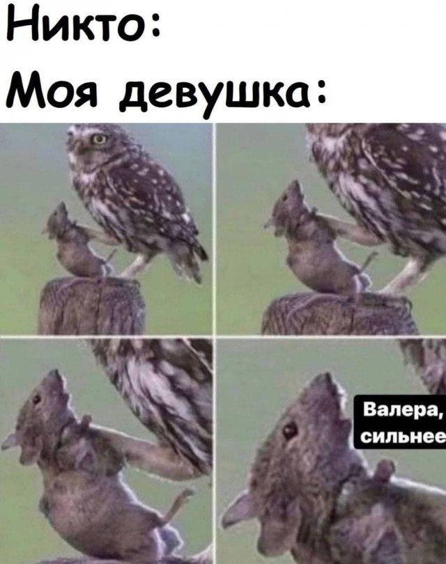 """Мемы и приколы про отношения и """"это"""""""