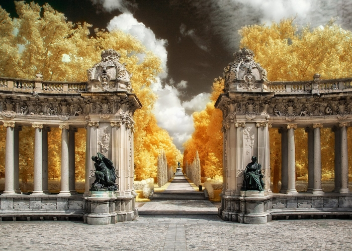 Удивительные инфракрасные снимки Марты Боррегуеро