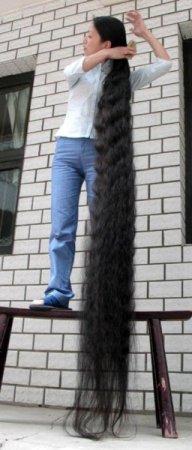 Девушка с волосами длиной 2 м 42 см (5 фото)